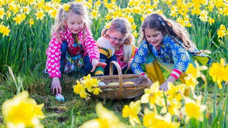 Easter egg hunt comes to Peckover House in Wisbech